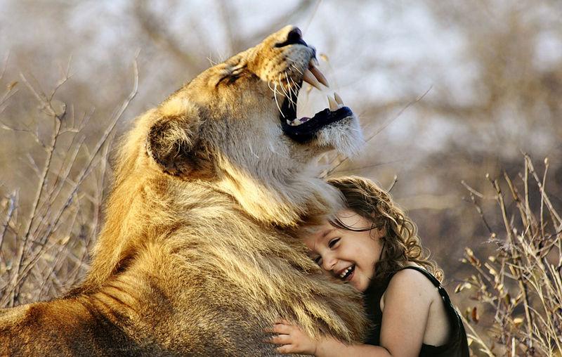 motivos-para-ser-vegano-amor-animales