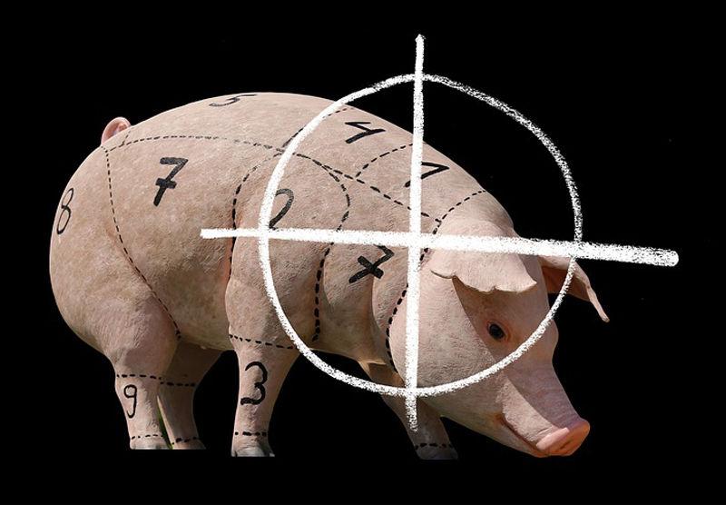 ventajas-veganismo-especismo
